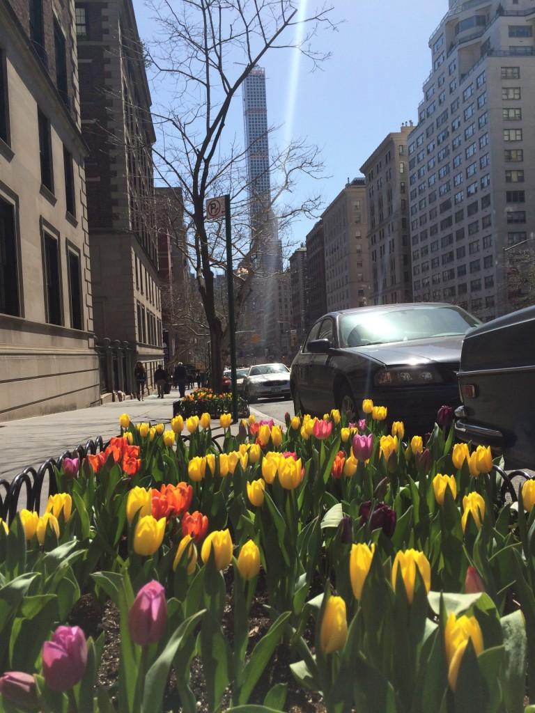 New York City, spring 2015