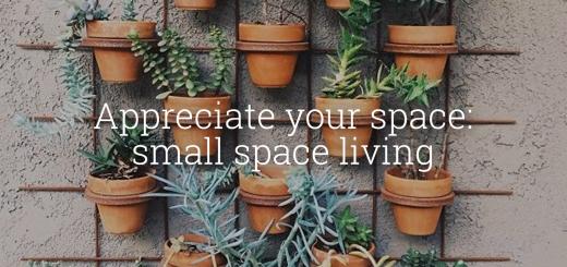 appreciateyourspace-smallspaceliving2