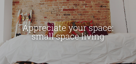 Appreciate your space : small space living - New York City Inspired