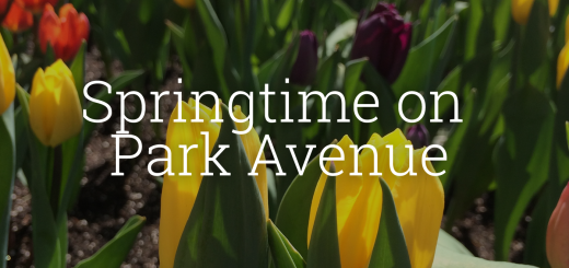 springtimeonparkavenue