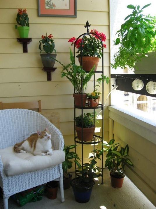 apartment garden2