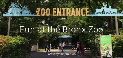 Fun at The Bronx Zoo